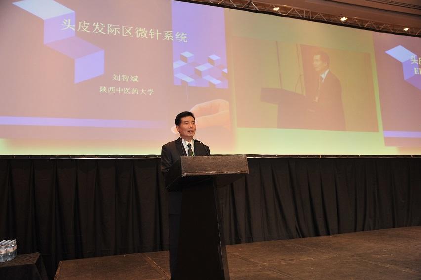 世界针联立法工作委员会刘智斌主任委员DSC_5486.JPG