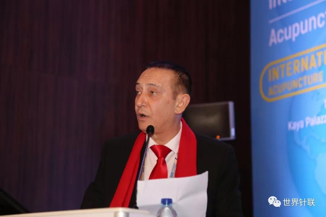 土耳其2019国际针灸学术研讨会之一